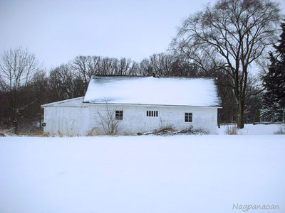 Snow-covered barn