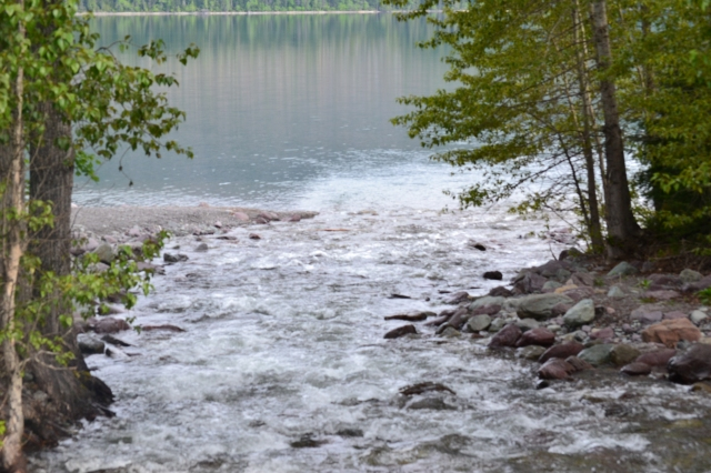 A creek flowing to Lake MacDonald