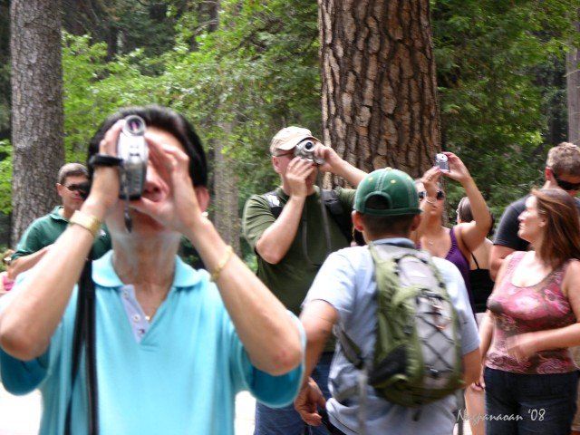 Tourists in Yosemite National Park