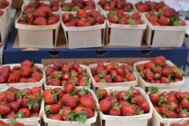 Fresh sweet strawberries