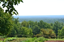 View from the farm