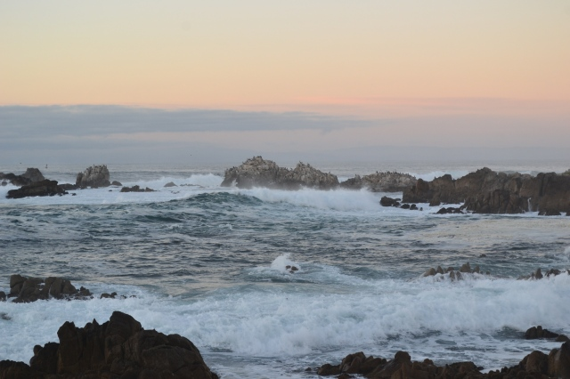 Chinaman's Cove, Point Lobos, California